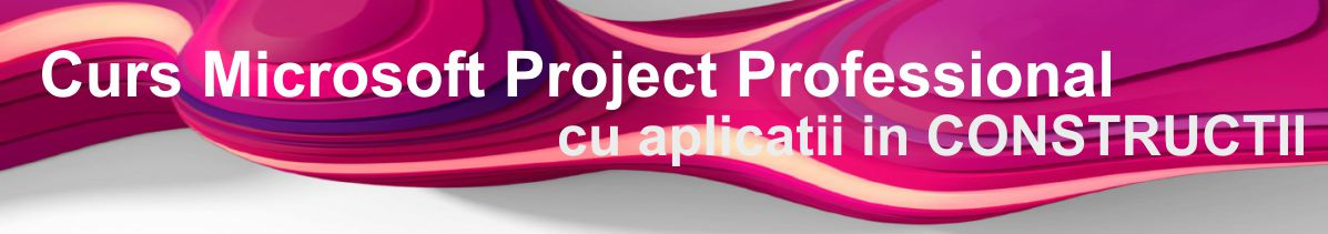 curs microsoft project in constructii