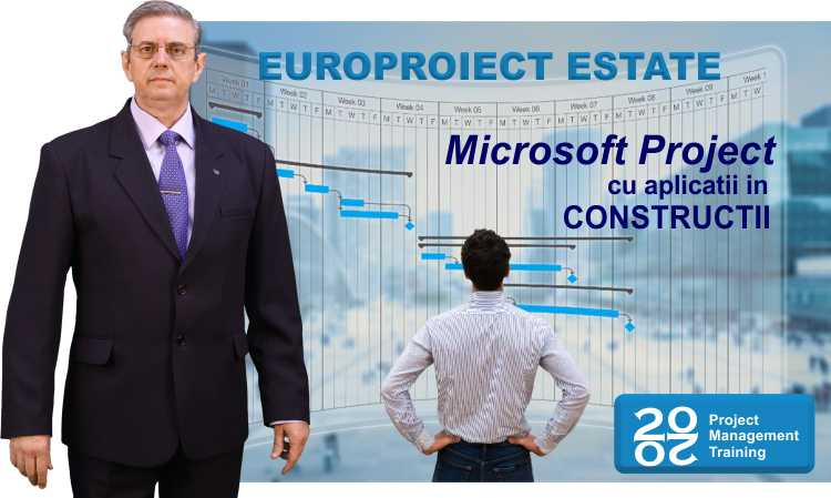 microsoft project in constructii